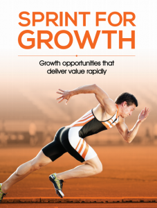 Sprint for Growth Workbook